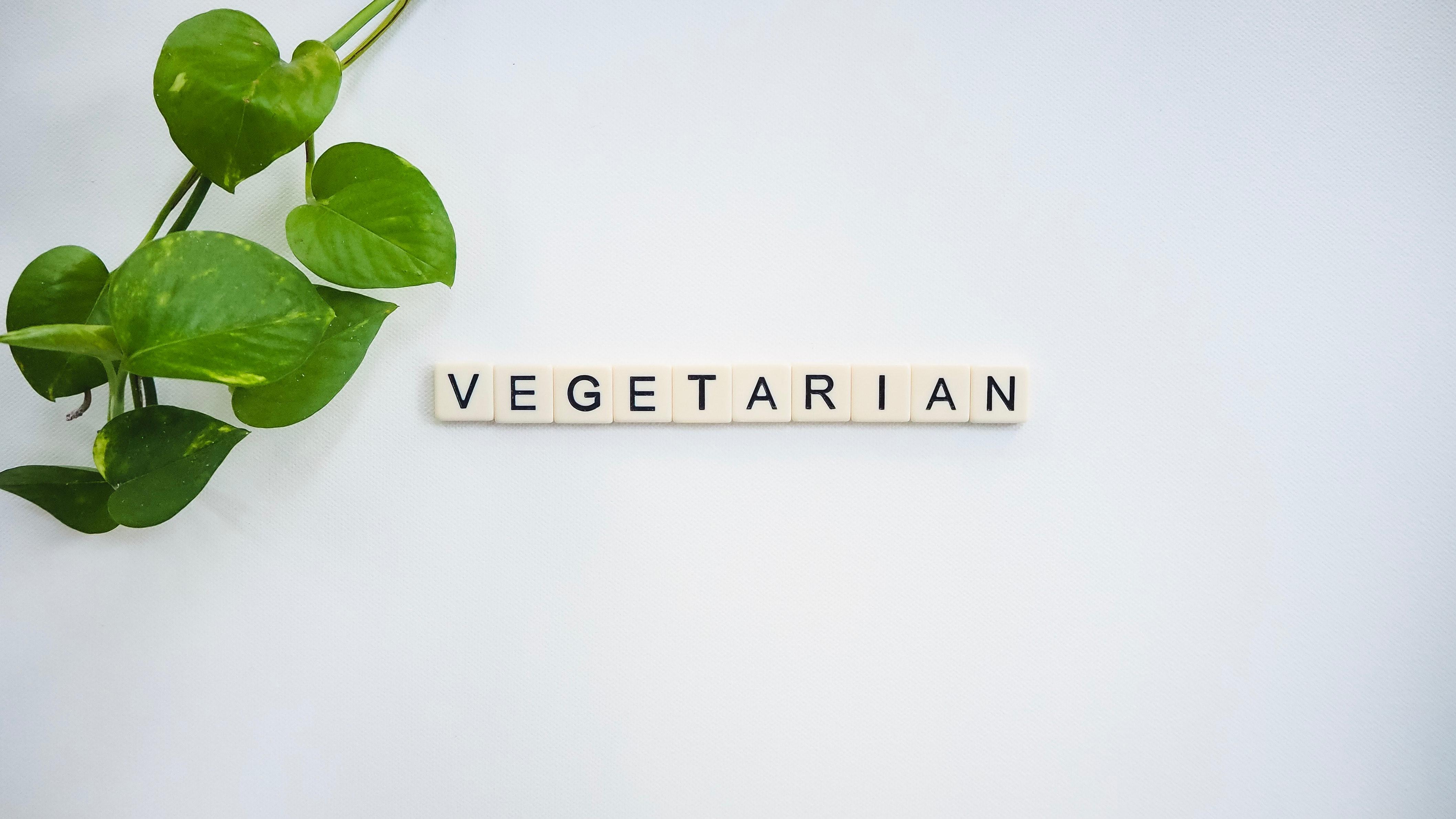 Mau Menjadi Vegan tapi Takut Kurang Gizi? Baca Dulu Tulisan Ini