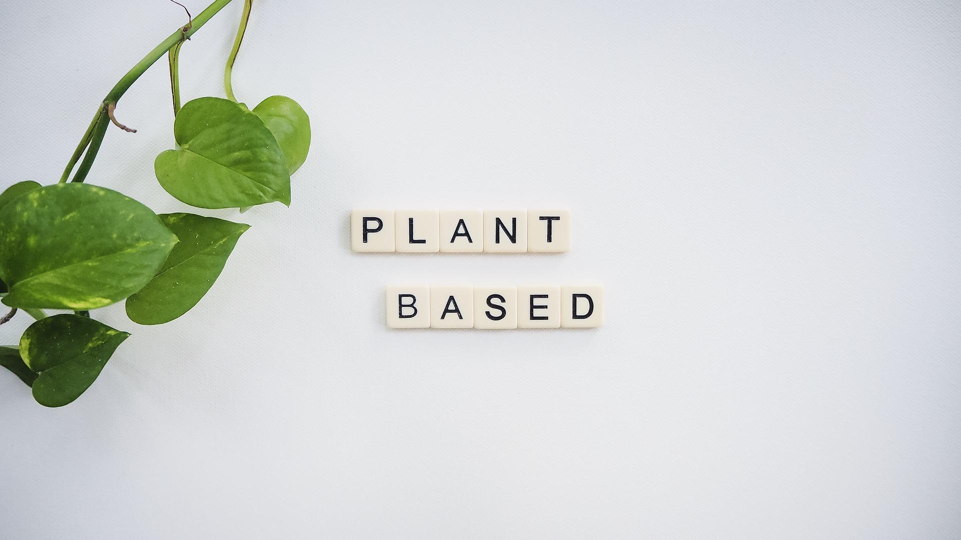 Perawatan Berbasis Tumbuhan: Makin Digemari